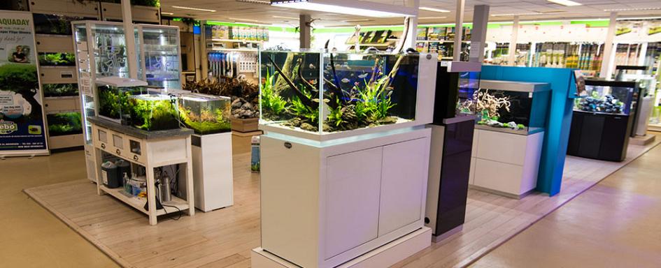 De grootste aquariumspecialist